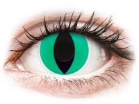 alensa.dk - Kontaktlinser - ColourVUE Crazy Lens - Anaconda - uden styrke
