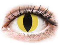alensa.dk - Kontaktlinser - ColourVUE Crazy Lens - Cat Eye - uden styrke